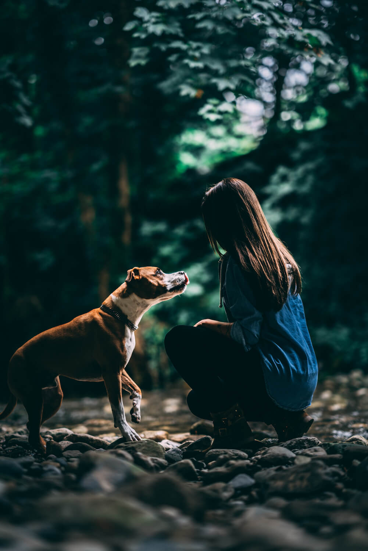 Fotoshooting Berneck Frau Hund